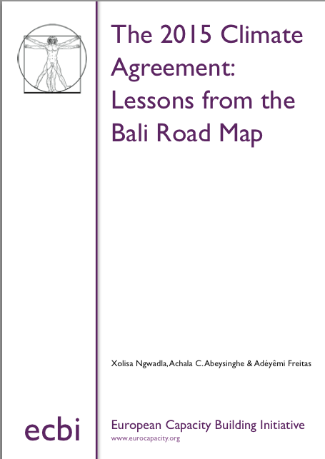 The 2015 Climate Agreement Lessons from the Bali Road Map www